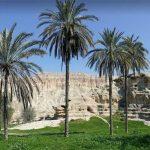 طراحی سایت در شهر پارسیان